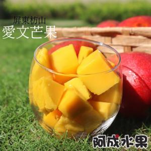 屏東枋山愛文芒果 (15粒/9台斤/件)