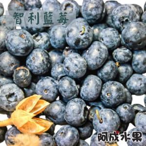 智利藍莓125g×5盒/箱