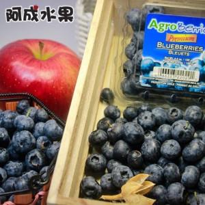 智利藍莓125g×2盒/箱