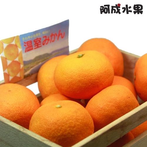 日本空運無籽套袋蜜柑禮盒 (15粒/1.2kg/盒)
