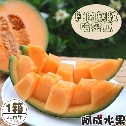 台南紅肉網紋哈密瓜 (6~7粒/20台斤/件)
