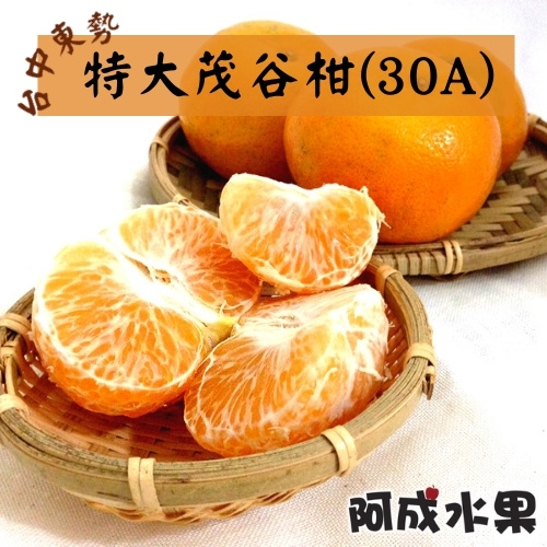 台中東勢特大茂谷柑 (30A) 10台斤/件