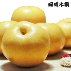 韓國梨仙子新高梨 (7粒/5kg/箱)