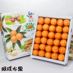 日本空運鹿耳島金桔禮盒 (60粒/1.2kg/盒)