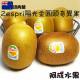 紐西蘭Zespri陽光金圓頭奇異果 (18粒/3.5kg/箱)