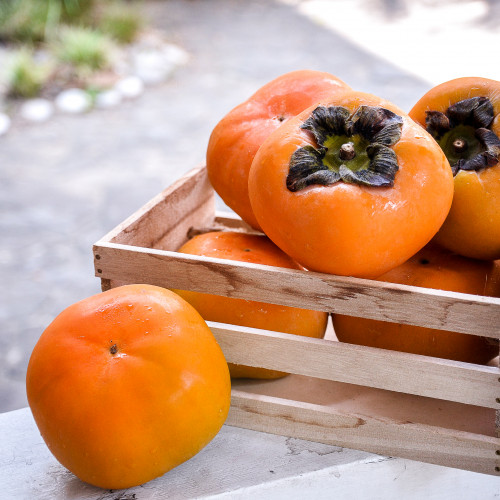 台中摩天嶺10A甜柿12粒/4.5kg/盒