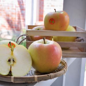 日本青森土歧蘋果32粒/10kg/箱