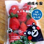 日本空運熊本熊草莓250g╳2袋入/盒