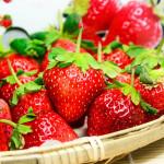 苗栗大湖草莓(1號果)約30粒/1台斤/盒