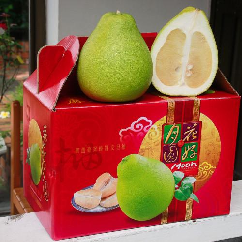 台南麻豆㊣老欉文旦禮盒 8~12粒/10台斤/盒