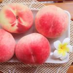 美國空運加州特大水蜜桃 15粒/4.5kg/箱