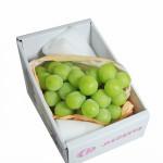 日本空運長野麝香葡萄(650g) 2串/盒