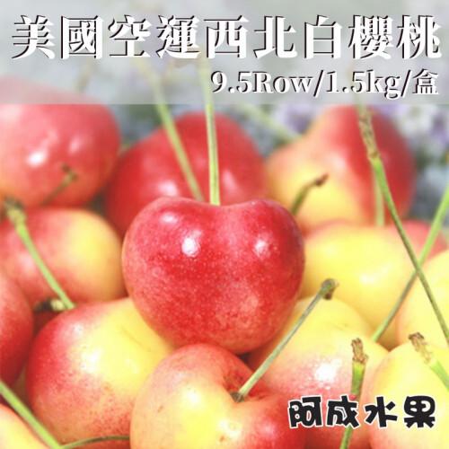 美國空運西北白櫻桃(9.5Row/1.5kg/盒)
