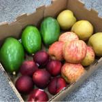 中元普渡拜拜鮮果組 (1箱) 4種水果/5kg/盒